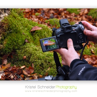 Autumn-workshop_3