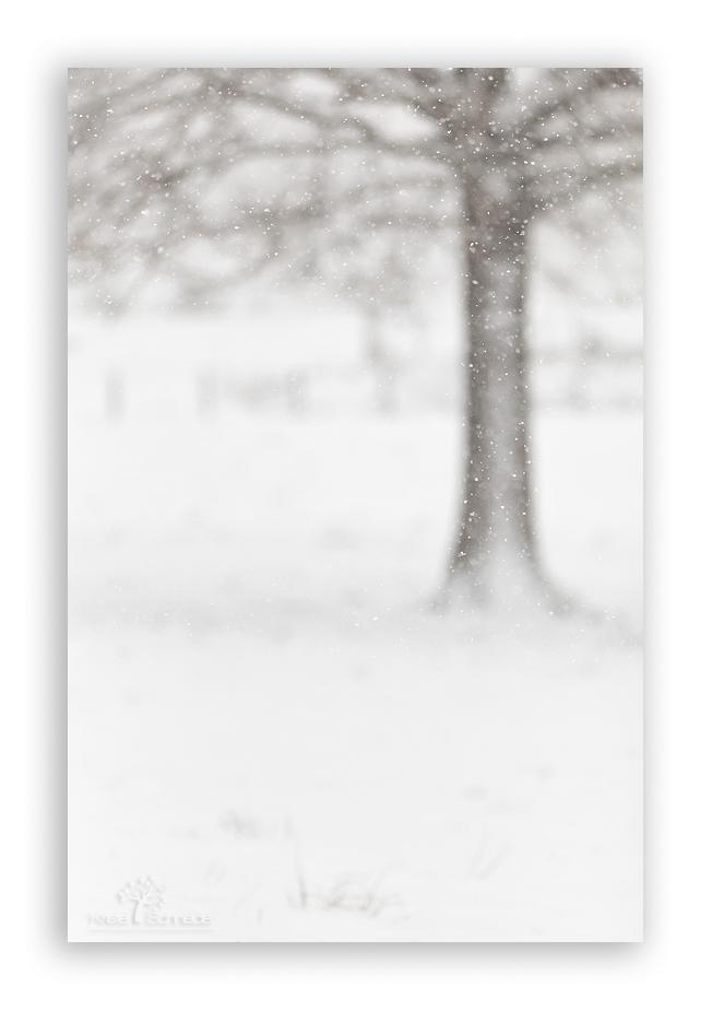 Falling-snow