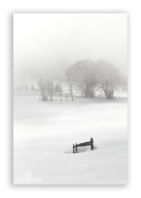 Les-Pradeaux-in-the-mist