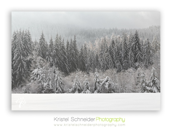 Livradois-Forez-winter-scenery_2