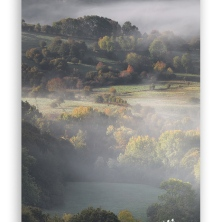 Autumn-scenery-with-mist-vertical