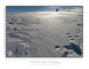 Summit-Montagne-des-Allebasses_10