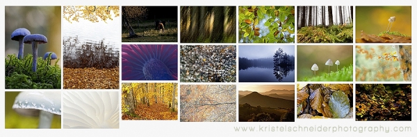 Autumn-in-Auvergne_2