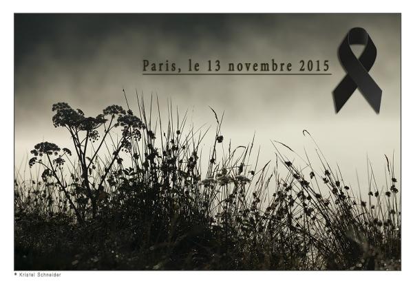 Paris-13_11_2015