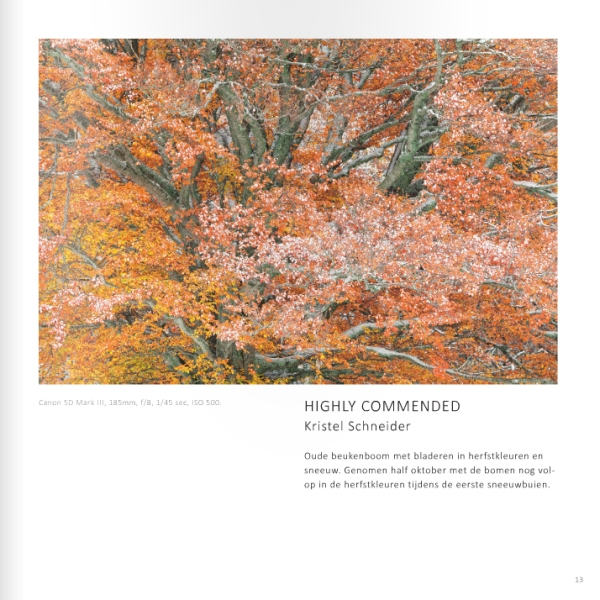Highly commended Lowland fotofestival