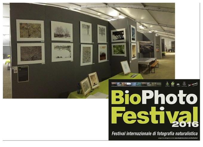 bio-photo-festival-2016