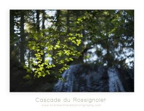 cascade-du-rossignolet