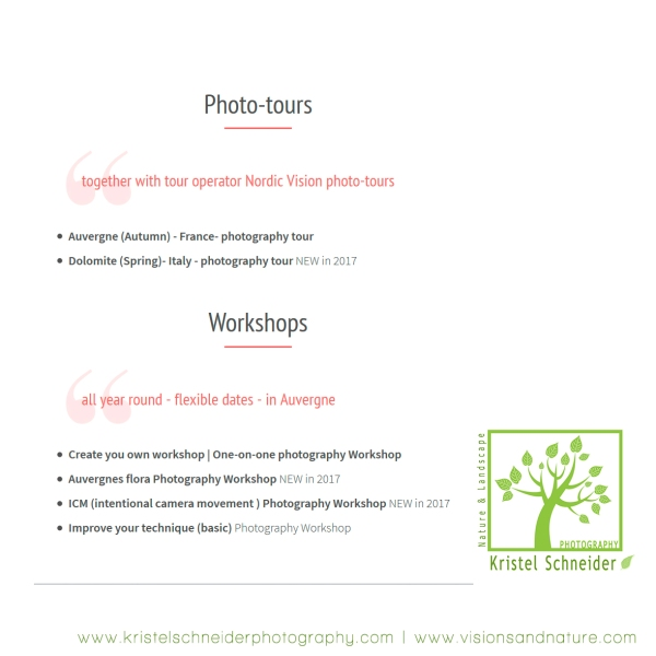 photo-workshops-tours
